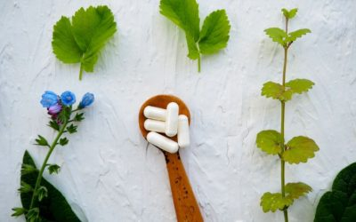 Supplements and the Immune System